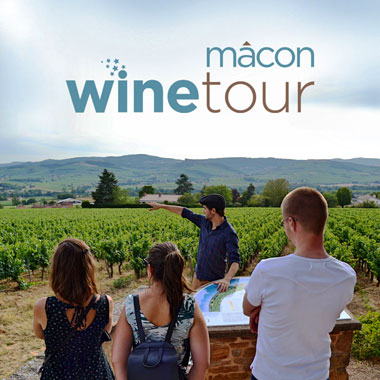 Mâcon Wine Tour
